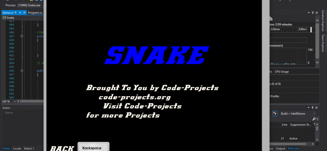 Snake Game In C# With Source Code | Source Code & Projects